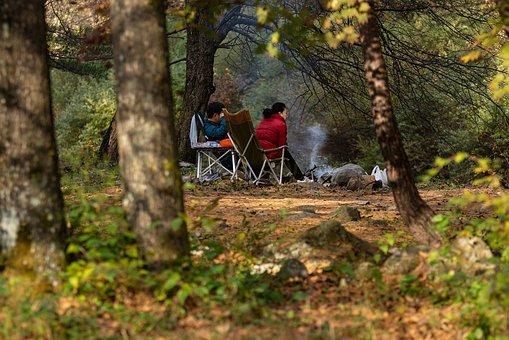 autumn 4830204  340 - キャンプの必需品